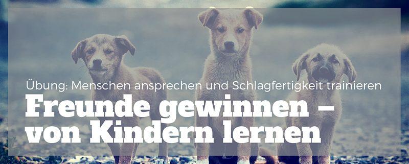 Von Kindern lernen: Freunde gewinnen Bild: drei Hundewelpen