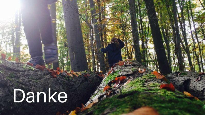 Bild von spielenden Kindern im Wald. Text: Danke