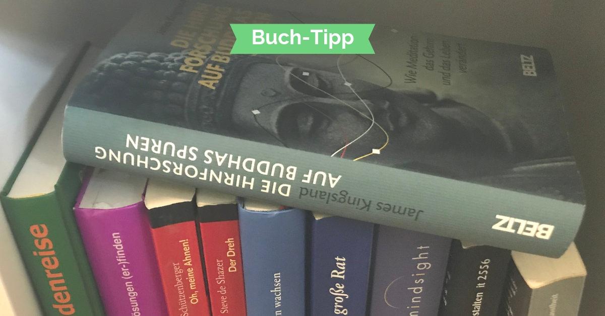 Buchtipp: Die Hirnforschung auf Buddhas Spuren Rezension